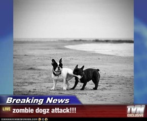 Breaking News - zombie dogz attack!!!