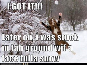 I GOT IT!!!  Later on, i was stuck in tah ground wif a face fulla snow