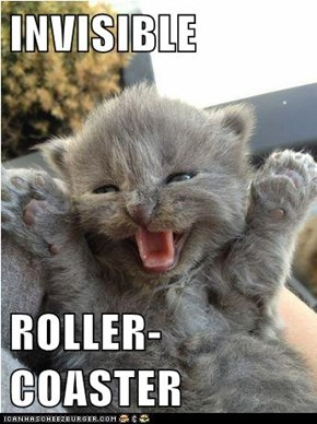 INVISIBLE   ROLLER-COASTER