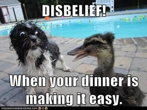 DISBELIEF!  When your dinner is making it easy.