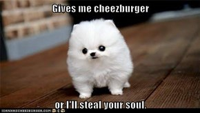 Gives me cheezburger  or I'll steal your soul.