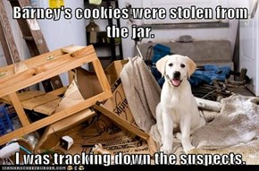 Barney's cookies were stolen from the jar.  I was tracking down the suspects.
