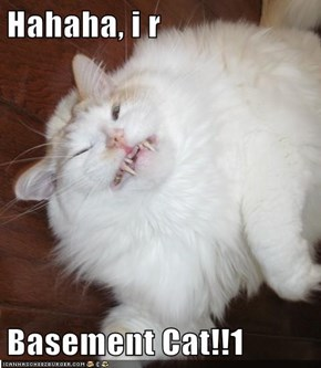 Hahaha, i r  Basement Cat!!1