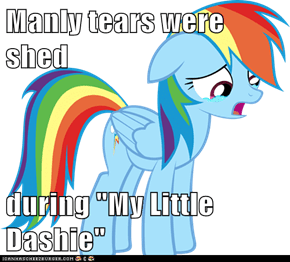 "Manly tears were shed  during ""My Little Dashie"""