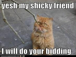 yesh my shicky friend  I will do your bidding