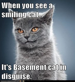 When you see a smiling cat...  It's Basement cat in disguise.