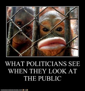 WHAT POLITICIANS SEE WHEN THEY LOOK AT  THE PUBLIC