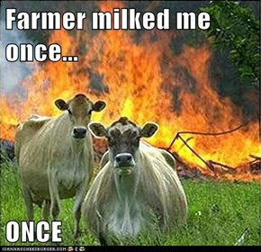 Evil Cows: My Milk is Flammable