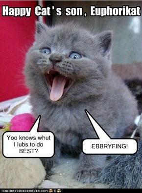 Happy  Cat ' s  son ,  Euphorikat