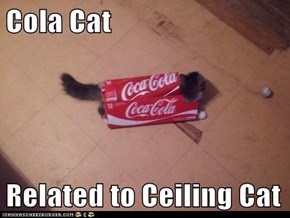 Cola Cat  Related to Ceiling Cat
