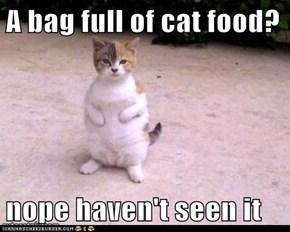 A bag full of cat food?  nope haven't seen it