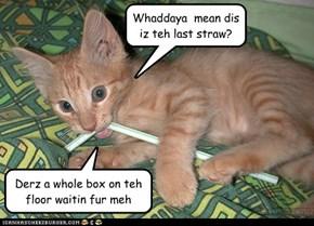 Bendee straws!!! (Well, dey r nao)