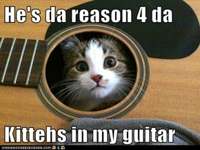 He's da reason 4 da  Kittehs in my guitar