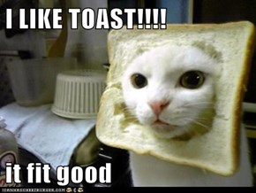 I LIKE TOAST!!!!  it fit good