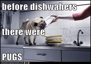 before dishwahers  there were PUGS