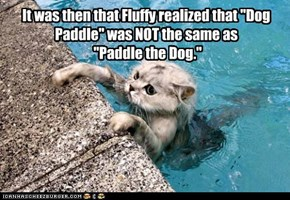 "It was then that Fluffy realized that ""Dog Paddle"" was NOT the same as  ""Paddle the Dog."""