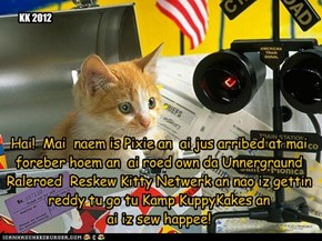 Hai!  Mai  naem is Pixie an  ai jus arribed at mai foreber hoem an  ai roed own da Unnergraund Raleroed  Reskew Kitty Netwerk an nao iz gettin reddy tu go tu Kamp KuppyKakes an  ai iz sew happee!