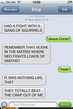 Those Squirrels Can Be Scary