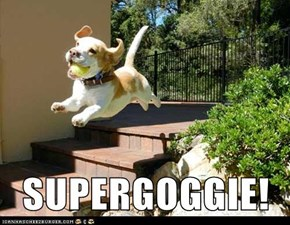 SUPERGOGGIE!