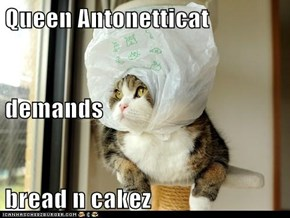 Queen Antonetticat demands bread n cakez