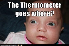 The Thermometer goes where?