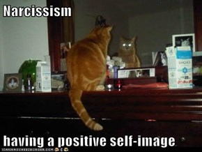 Narcissism  having a positive self-image