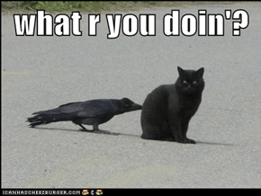 what r you doin'?