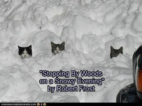 """Stopping By Woods  on a Snowy Evening"" by Robert Frost"