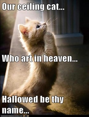 Our ceiling cat... Who art in heaven... Hallowed be thy name...