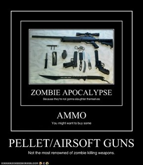 PELLET/AIRSOFT GUNS