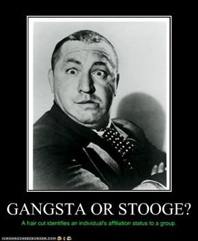 GANGSTA OR STOOGE?