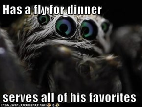 Has a fly for dinner  serves all of his favorites