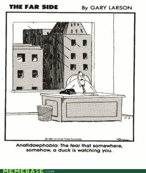 Anatidolanphobia