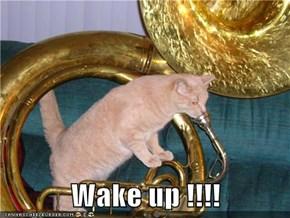 Wake up !!!!