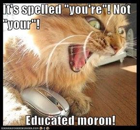 "It's spelled ""you're""! Not ""your""!  Educated moron!"