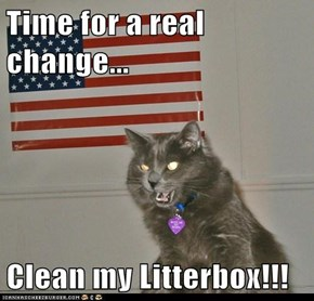 Time for a real change...  Clean my Litterbox!!!