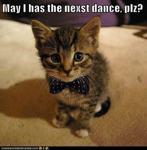 May I has the nexst dance, plz?