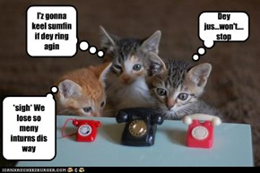 I'z gonna keel sumfin if dey ring agin