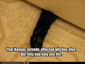 That Kansas tornado  affected witches also. But they had only one life.