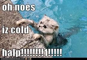 oh noes iz cold halp!!!!!!!!1!!!!!