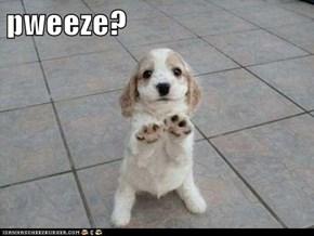 pweeze?