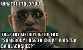 "WHAT IF I TOLD YOU  THAT THE MELODY INTRO FOR ""SOMEBODY I USE TO KNOW"" WAS ""BA BA BLACKSHEEP"""