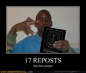 17 REPOSTS