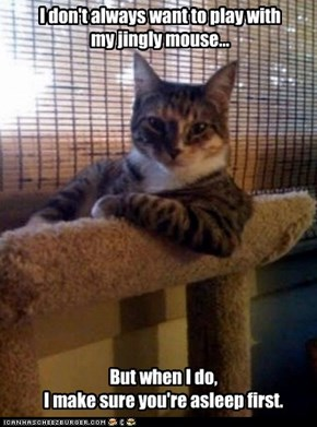 The Most Interesting Cat in the World: Oh Good, You Can Play Too