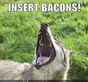 INSERT BACONS!