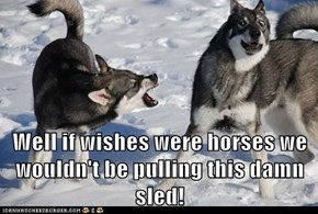 Well if wishes were horses we wouldn't be pulling this damn sled!