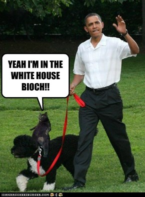 YEAH I'M IN THE WHITE HOUSE BIOCH!!