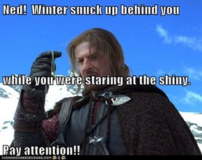 Ned!  Winter snuck up behind you  while you were staring at the shiny. Pay attention!!