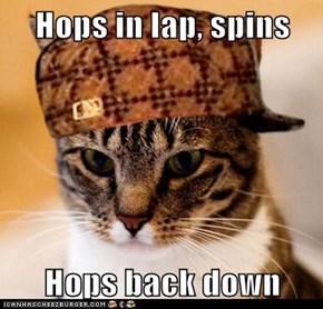 Hops in lap, spins  Hops back down