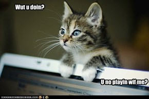 Kitteh wanna play